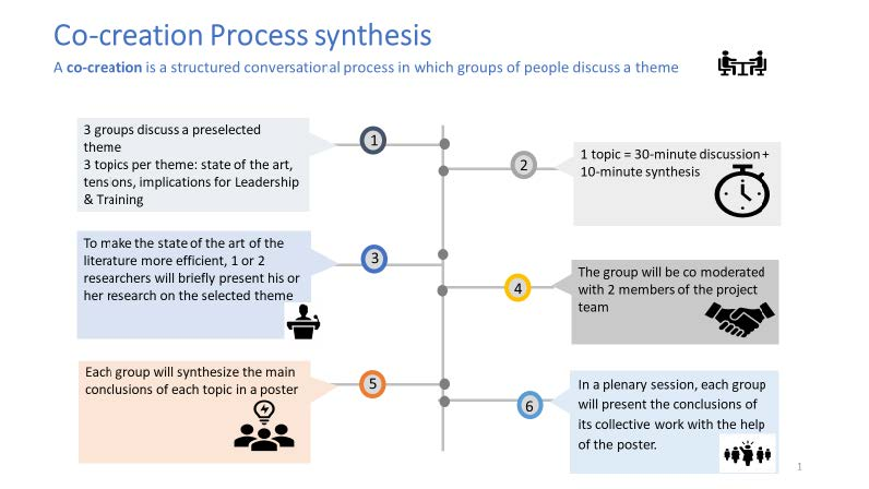 The co-creation of the process synthesis during the workshop ELSE